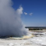 geyser yellowstone park