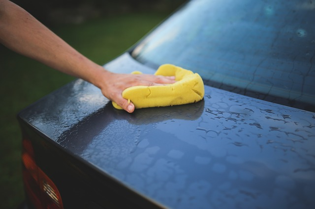 Organic way to wash your car